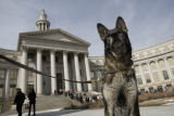 Rex II (cq) stands outside the Denver City and County Building after a bomb threat was called in...