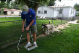 Sam Johnson, (cq) President and Scoop Master of Pet Scoop cleans up dog poop from a clients...