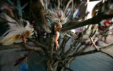 Fairies hang from a tree where Makai works at the Renaissance Festival in Larkspur, Colo....