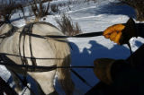 (12/21/04,STEAMBOAT SPRINGS, CO) Windwalker Tours offer afternoon sleigh rides off of Hwy 131 in...