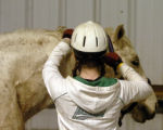 "Denver, Colo.12/30/04  Gabby Golenda brushes ""Ghost"" after riding in the indoor arena at..."