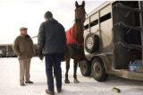 (LITTLETON, Colo., Dec. 23, 2004)  Dr. Marvin Beeman (left) meets with Dan Lincoln and his horse...