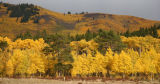 Kenosha Pass Photo by: Lynn DeBruin Rocky Mountain News Reporter 720-544-1552