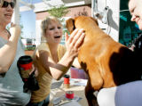 BG0125 Kassi Anderson, 18, reunites with her graduation present, a boxer named JD, at the Windsor...