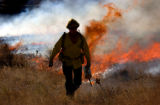 (LAKEWOOD Colo, December 28, 2004)  A fireman walks through a field with a drip tourch setting a...