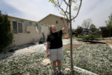 ({seqn)} Allison Larson looks at a tree in her backyard on Sunday, May 25, 2008. Her house was...