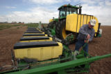 Dan Brown, a third generation Yuma County farmer gets his corn planter ready for planting in a...