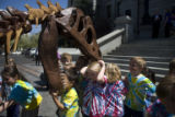 Cole Dempsey, 5, (cq) plants his head into the mouth of an allosaurus while Jade Ryan, 6, (cq)...