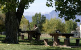 Paul Cook, works on some writing at Oakhurst Park in Westminster Tuesday October 7, 2008. He is a...