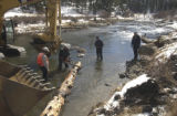 Elevenmile Canyon, Colo.-November 5,2004- Government crews and volunteers are doing work to...