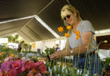 Peggy Hupp (cq) puts price tags on flowers Thursday afternoon May 5, 2005 at Denver Botanic...