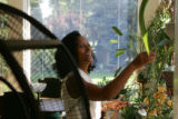 Myrtle-Rose Greene, 55, tends to her house plants in her home.  She and and her husband, Gerald...