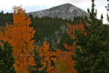 As the aspens turn color, and a dusting of snow is on the peaks, Chair 5 waits for the new season...
