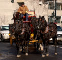 (DENVER Colo., January 6, 2005)  Scott Smith leads his team of black Quarter horses down Bannock...
