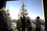 (Denver, Colo., Dec. 2, 2004) Larry Green loads flocked Christmas trees into his truck at Nick's...