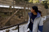 Colorado Springs, Colo.12/9/04-- At the Cheyenne Mtn Zoo, Veteranarian Farah Murrani from Baghdad...