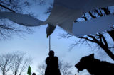 (11/08/2004) Boulder, Colorado-Ellen Stark, Boulder, hoists a dove in protest of the Iraq...