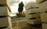 (11/09/04, Denver, CO)  The Learning Source donated a huge Spruce to Belmar Plaza that was taken...