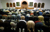 [Denver, CO - Shot on: 11/9/04] Muslims bow in unison as they partake in one of their five daily...