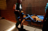 (DENVER, Colo., Nov. 19, 2004) Stan Holiski, technician at Alameda East Veterinary Hospital helps...