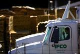 A truck driver waits in the parking lot at IFCO Systems in Commerce City on Thursday April 20,...