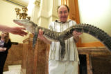 Clarence Miller (cq) a lobbyist, holds a four foot alligator outside of the Senate Chambers at the...