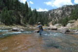 Ed Dentry photo  Nymphing in technical trout streams, such as the South Platte River in Cheesman...