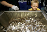 Justin Best (cq), 6, of Lone Tree, looks into a vat of blanks that are used to make Colorado...