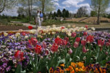 Barbara Muro (cq) and her husband Leo Muro, left to right, walk through a flower garden Tuesday...