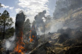 Pike Hot Shots wildland  firefighter Adam Rodriguez,(cq) from Denver works on the 110 acre (from...