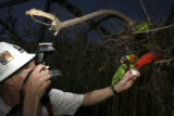 Dave Parsons, (cq), ZooTog, Denver Zoo Staff Photographer, encourages and shoots pictures of the...