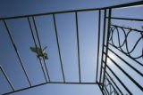 (3/30/05, Denver, CO) An arbor at the Botanic Gardens for Garden Architecture (PHOTO BY JUDY...