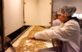 Griselda Andrade visually checks nuts before they are put into a Larabar, Thursday morning, March...