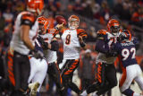 In the fourth quarter, the Cincinnati Bengals Carson Palmer (#9, QB) looks to pass while being...