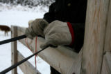 The steady hands of Justin Iacovetto guides the feeding sleigh Wednesday afternoon December 13,...