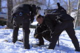 DM0214   Denver Police investigators  dig slugs out of the snow covered hillside in front of a...
