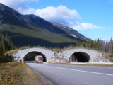 (FILE PHOTO) Close up of overpass at Banff National Park in Alberta, Canada shows the fences and...