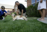 Caleb Seeton(cq), 12, and father Jim Seeton(cq) play with Ute, a six-year-old golden retriever,...