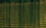 Aspen color is reflected in a wake of a boat on Ruedi Reservoir, September, 20, 2007, near Basalt....