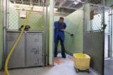 Denver Animal Control officer Isaac Ben-Joseph, cq, scrubs down a kennels walls Wednesday Sept....