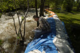 Larry Taylor (cq ) shores up a critical part of his sandbag wall Tuesday morning May 24, 2005 at...