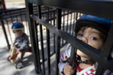 (178) Season to Share: Joselyn Do, 2, of Boulder, pauses her tricycle ride to peek through a...