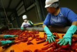MJM304  Bibiana Hernandez (cq), right, and others inspect chile peppers on a conveyor belt Friday...
