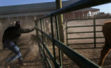 (PG14183)  Wranglers sort cattle at the Colorado Cattle Ranch in New Raymer, Colo.,  on Wednesday,...