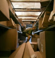 (022)  UPS driver Tim Hernandez makes his delivery stop on his regular route around Broomfield,...