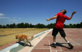 Stephen Axelrod (cq), throws a ball to his dog Sophie in the dry grass at Cranmer Park in Denver,...