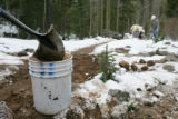 A volunteers with Outdoor Colorado dumps dirt into a bucket while working to repair Tanglewood...