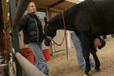 MJM083  Rita Knudson, left, holds her mare, Little Kitten as she is treated by Maryann Laffan...