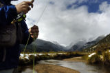 (9/22/2004) Estes Park, Colorado-Michael McBurnie, Tampa, Fla., fly fishes in Rocky Mountain...