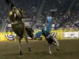 At the National Western Stock Show, Scott NeSmith, from TN does a handstand dismount of at the...